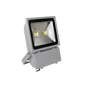 Светодиодный прожектор LedEX  100W (6500lm, 6500К)